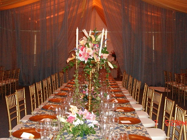 Party rentals miami fl event rentals miami florida fort ts30 junglespirit Choice Image